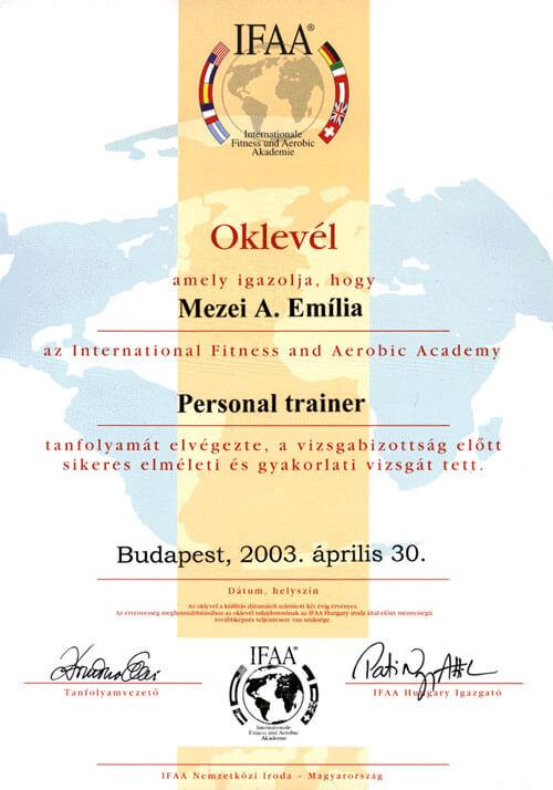 diploma01-em